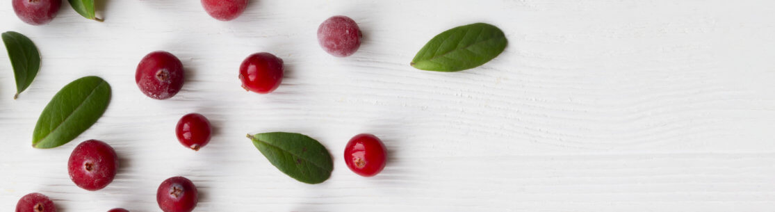 Cranberries with twigs and leaves on a white background with space for text.